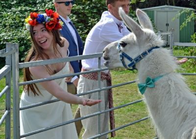 Beckwith & Fuller Events | Providing High End, Bespoke, Circus-Themed Entertainment | Llama